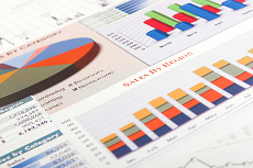 Charts and graphs showing website statistics important in making strategic Internet marketing decisions