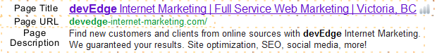 SERP Elements - How Your Page Appears in Search Results